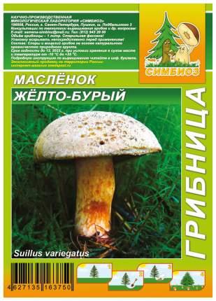 Мицелий грибов Грибница субстрат микоризный Масленок Желто-бурый, 1 л Симбиоз