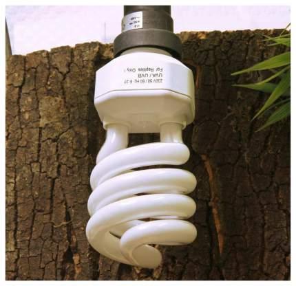 Лампа для террариума JBL 15 JBL6185100