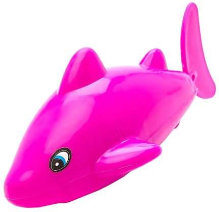 Заводная игрушка для купания 1Toy Дельфин Т80519
