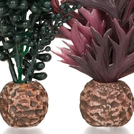 Искусственное растение для аквариума biOrb Морской бисер и зеленая ламинария, набор, 20см