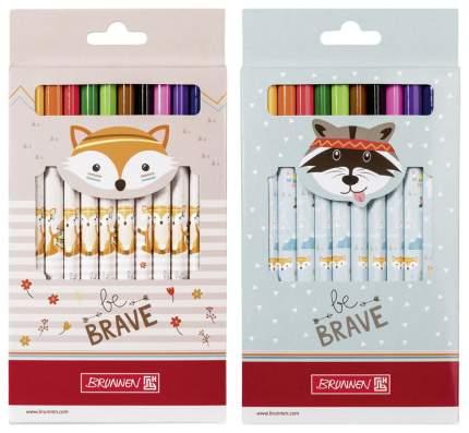 Набор цветных карандашей BRUNNEN be BRAVE Лиса Енот BR29856641 12 шт