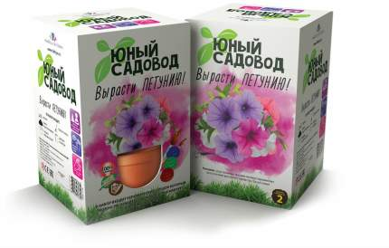 Набор для выращивания Юный садовод Вырасти петунию 409 петуния