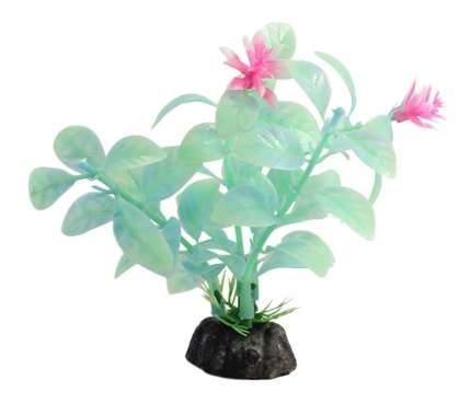 Laguna Растение аквариумное Ротала сиреневая, 30 см