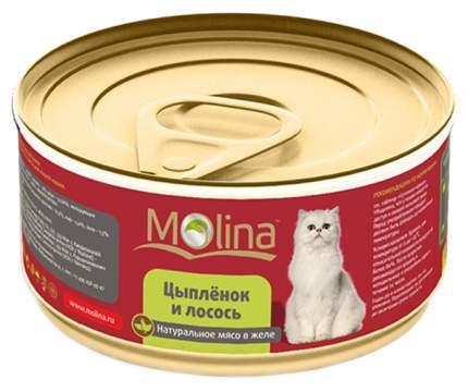 Консервы для кошек Molina, с цыпленком и лососем в желе, 12шт по 80г