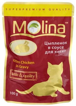 Влажный корм для котят Molina, с цыпленком в соусе, 24шт по 100г