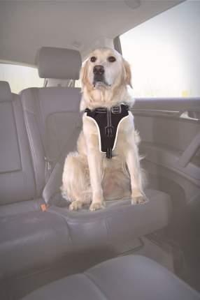 Шлейка к ремню безопасности Trixie XL, черный
