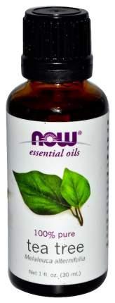 Эфирное масло Now Foods Чайное дерево