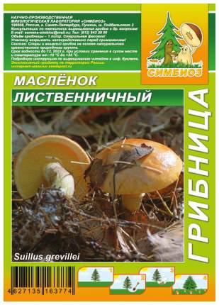 Мицелий грибов Грибница субстрат микоризный Масленок Лиственничный, 1 л Симбиоз