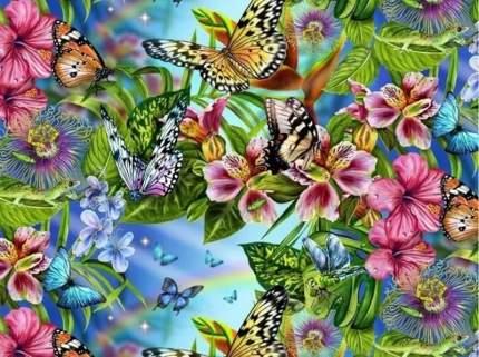 Картина по номерам на картоне Color Kit Бабочки