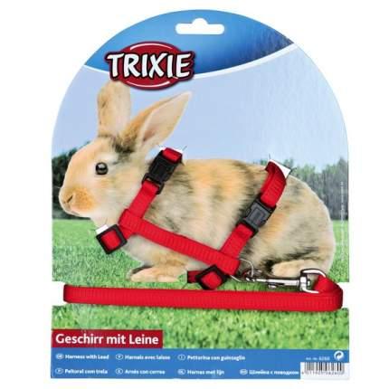 Поводок и шлейка TRIXIE для кроликов, в ассортименте,  25-44см*10мм*1,2м