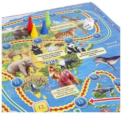 Семейная настольная игра Умка Животные Мира