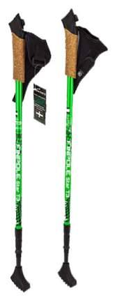 Палки для скандинавской ходьбы Finpole Star T3 67-135 см