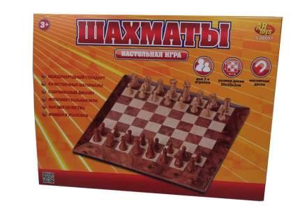 Шахматы магнитные s-00097(wz-a2093)