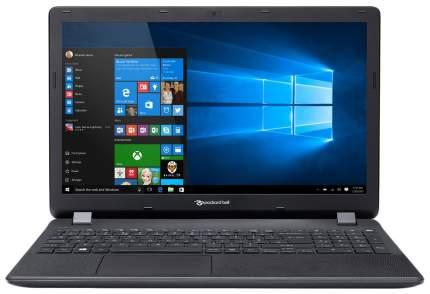 Ноутбук Packard Bell Easynote ENTG81BA-P1MV (NX.C3YER.022)