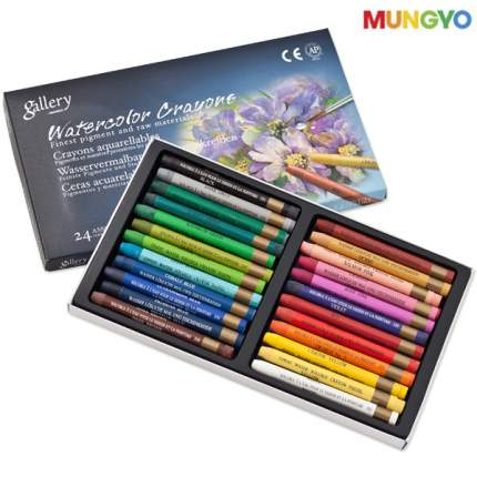 Набор пастели сухой мягкой квадратной в блистере MUNGYO, 24 цвета