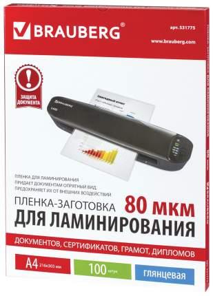 Пленки-заготовки для ламинирования, 100 штук, для формата А4, 80 мкм