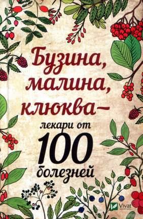 Книга Бузина, Малина, клюква - лекари От 100 Болезней