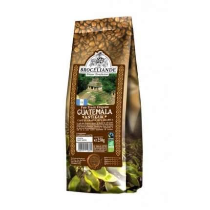 Кофе в зернах Broceliande antigua броселианд Гватемала антигуа 250 г