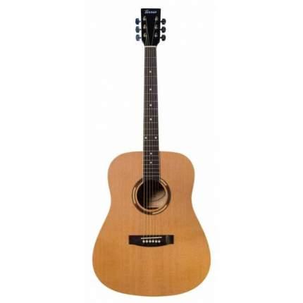 Акустическая гитара TERRIS D-400 NA