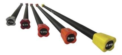 Бодибар PX-Sport BC213-5 120 см 5 кг