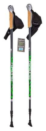 Палки для скандинавской ходьбы Finpole Nova 30% Carbon