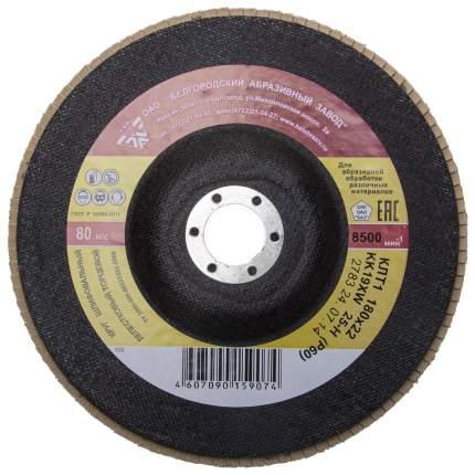 Диск лепестковый для угловых шлифмашин БАЗ 36563-180-60
