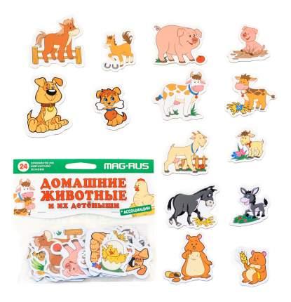 Магнитная игра Анданте MAG-RUS Домашние животные и их детеныши