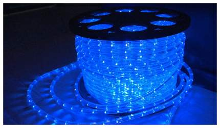 Дюралайт XMAS-GROUP DL-LED-100-3B Синий
