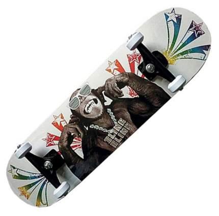 Скейтборд MaxCity 78,7 x 20,3 см King Kong