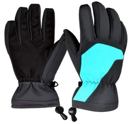Зимние перчатки Boodun Blue, L