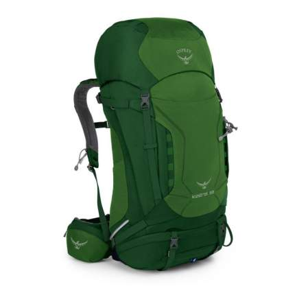 Туристический рюкзак Osprey Kestrel M/L 58 л зеленый