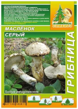Мицелий грибов Грибница субстрат микоризный Масленок Серый, 1 л Симбиоз