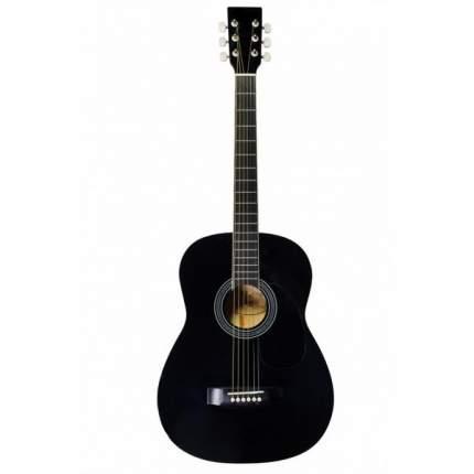 Акустическая гитара TERRIS F-380 BK