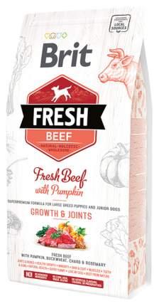 Сухой корм для щенков Brit Fresh Puppy Large Bones & Joints, говядина, тыква, 12кг
