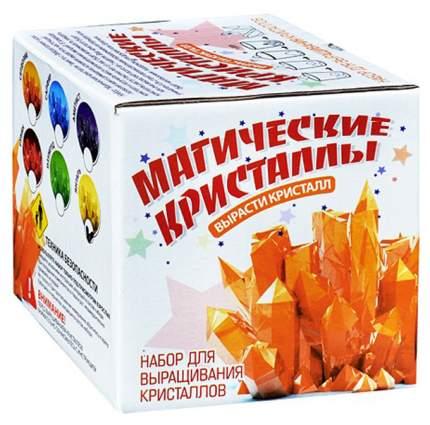 Набор для экспериментов Магические кристаллы Микро набор
