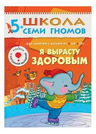 Полный курс Занятий С Детьми 5-6 лет Мозаика-Синтез В подарочной Упаковке Школа Семи Гном.