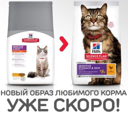 Сухой корм для кошек Hill's Science Plan Sensitive Stomach & Skin, курица, индейка, 0,4кг