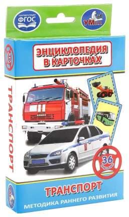 """Карточки развивающие """"Транспорт"""", 36 карточек, УМКА"""
