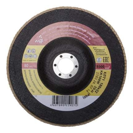 Диск лепестковый для угловых шлифмашин БАЗ 36563-180-80