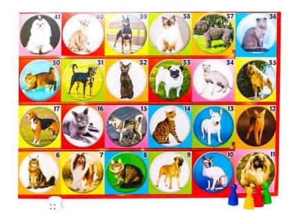 Семейная настольная игра Русский Стиль Кошки и собаки