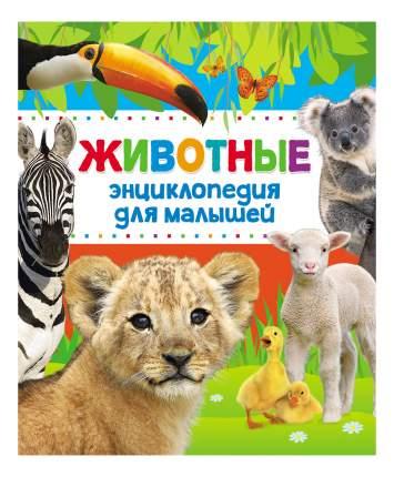 Книжка Росмэн Энциклопедия животных для малышей