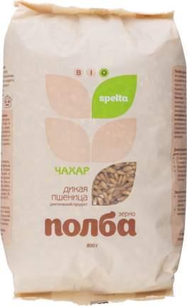 Полба дикая пшеница BIO spelta диетический продукт 800 г