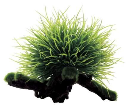 Искусственное растение ArtUniq Utricularia on driftwood 12