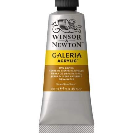 Акриловая краска Winsor&Newton Galeria натуральная сиена 60 мл