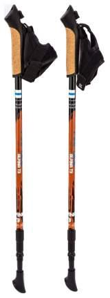 Палки для скандинавской ходьбы Finpole Alpina T3 60% Carbon 65-135 см