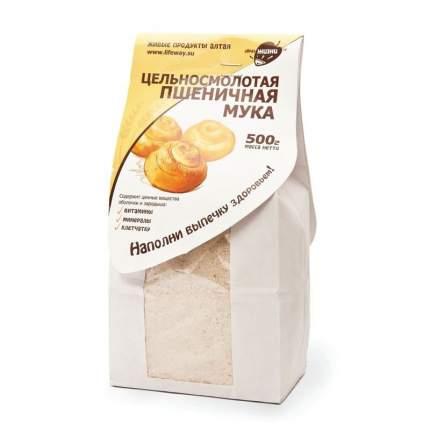 Мука пшеничная Образ жизни цельносмолотая 500 г