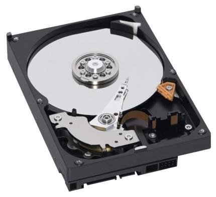 Внутренний жесткий диск Lenovo ThinkServer 0C19503 2TB (0C19503)