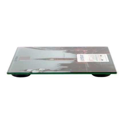 Весы напольные Endever Aurora-556