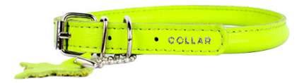 Ошейник COLLAR GLAMOUR круглый для длинношерстных собак, 13мм, 45-53см, зелёный