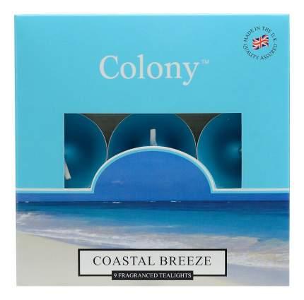 """Набор ароматических свечей Colony CH0167 """"Морской бриз"""" 9 шт"""